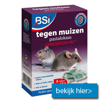 nummer 4 in top5 muizengif BSI pasta